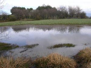 La Laguna de Canchongo